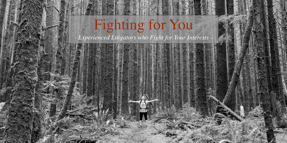 FightingForYou